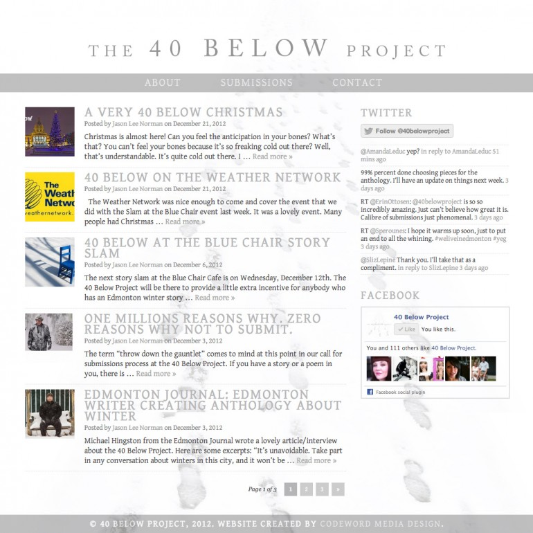 40 Below Project Website